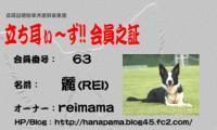 rei-card[1].jpeg